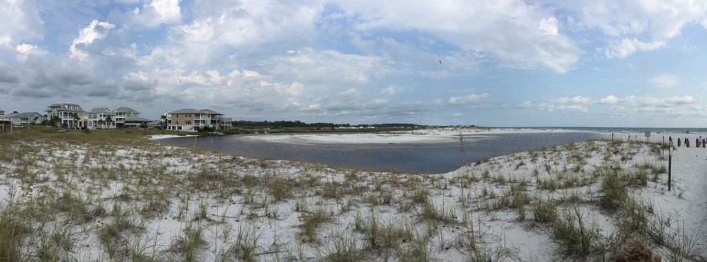 Tidal Pool, Grayton Beach, Florida